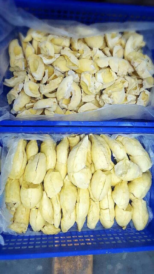 FROZEN DURIAN WITHOUT SEED from Thailand